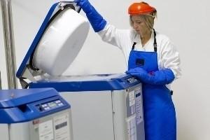 Medicina rigenerativa, premio internazionale per la ricerca